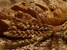 Free Bread Stock Photography - 14394442