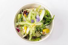 Free Salad Stock Images - 14395004