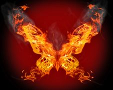 Free Butterfly In Orange Flame Royalty Free Stock Image - 14395136