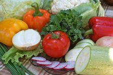 Appetizing Vegetable Stock Photo