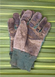 Free Old Gardening Gloves Royalty Free Stock Photos - 14397408