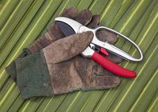 Free Secateurs And Old Gardening Gloves Stock Image - 14397501
