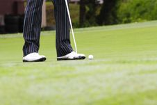 Golfer Putting Stock Images