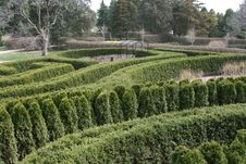 Free Evergreen Garden Maze Royalty Free Stock Images - 14399799