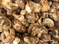 Free Dried Mushrooms From Chinese Market Stock Photos - 1443693