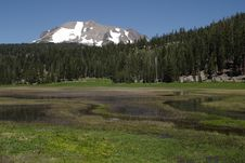Upper Meadow Royalty Free Stock Photo