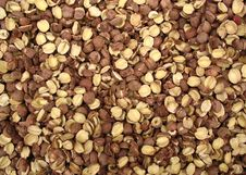 Free Dried Nuts From Chinese Market Royalty Free Stock Photo - 1443735