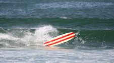 Free Surf Board Royalty Free Stock Photo - 1443865
