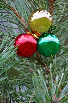 Free Three Christmas Bulbs Royalty Free Stock Photo - 1444185
