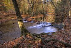 Free Stream In Autumn Stock Photography - 1446482