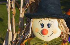 Free Scarecrow Royalty Free Stock Photos - 1447758