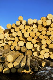 Free Pile Of Logs Stock Image - 14401291