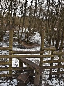Woodland Forest Walk And Stile Stock Photos