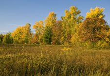 Free Meadows In Middle Autumn Royalty Free Stock Image - 14405726