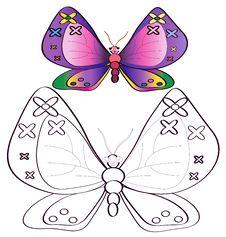 Free Butterflies Stock Photo - 14405930