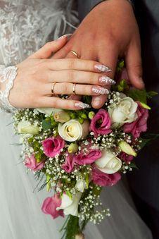 Free Beautiful Bridal Rings Stock Photo - 14407260