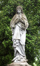 Free Statue Of The Virgin Mary Royalty Free Stock Image - 14418476