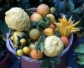 Free Fresh Fruit Royalty Free Stock Photography - 14418977
