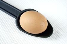 Free Egg Stock Photo - 14412220