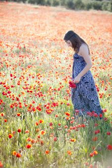 Free Young Girl In Poppies Field Stock Image - 14414091
