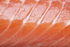 Free Raw Salmon Steak Royalty Free Stock Photography - 14415697
