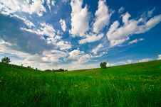 Free Blue Sky With Clouds And Field Royalty Free Stock Photo - 14416045
