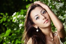 The Attractive Girl Stock Images