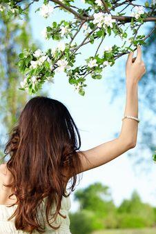 Free Beauty Stock Photos - 14416163