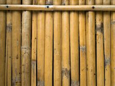 Free Bamboo Background Royalty Free Stock Photo - 14416975