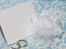 Free Wedding Accessory Royalty Free Stock Images - 14417069
