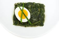 Free Sauteed Spinach And Egg Stock Images - 14418384