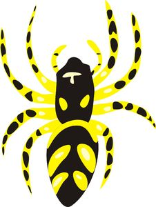 Free Spider Royalty Free Stock Images - 14418509