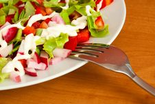 Free Salad Stock Image - 14418701