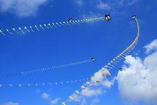 Free Kites In The Sky Stock Photos - 14419253