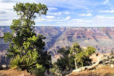 Great Colorado Canyon Stock Images
