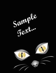 Black Cat At Midnight Royalty Free Stock Photo