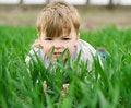 Free Boy In Grass Stock Photos - 14420603