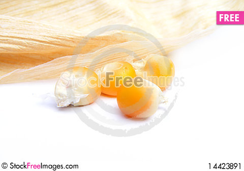Free Detail Of A Corn Stock Image - 14423891
