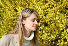 Free Girl And Yellow Flowers Hovering Royalty Free Stock Photography - 14420917