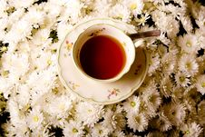 Free Tea Stock Photo - 14421150