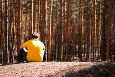 Man In Pine Forest Royalty Free Stock Photos