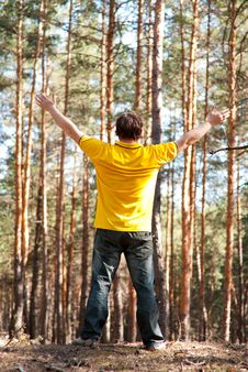 Man In The Pine Forest Stock Photos