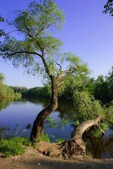 Free Landscape Royalty Free Stock Photos - 14421948