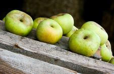 Free Green Apples Royalty Free Stock Photo - 14421955