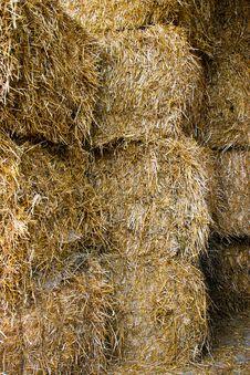 Free Straw Stock Photo - 14422070
