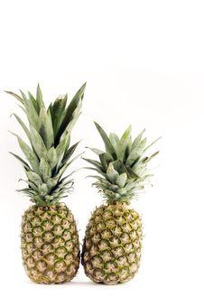 Free Pineapples On White Stock Photos - 14422563