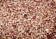 Free Beans Royalty Free Stock Image - 14423616