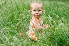 Free Toddler Girl In Green Grass Royalty Free Stock Image - 14425006