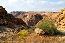 Free Dead Sea Hills Royalty Free Stock Photo - 14427515