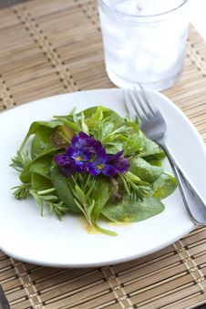 Free Fresh Spinach Salad. Royalty Free Stock Photography - 14427857
